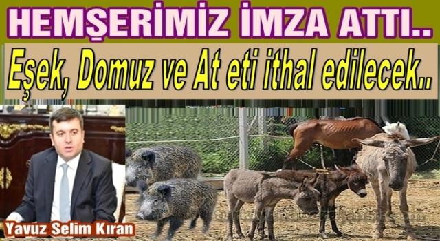 Türkiye Eşşeksiz kaldığı için etini ithal edecek..