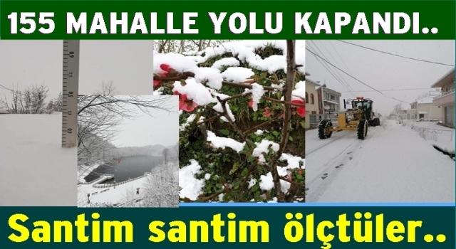 Ordu'nun yüksek bölgelerinde kar yağışı ulaşımı etkiledi..
