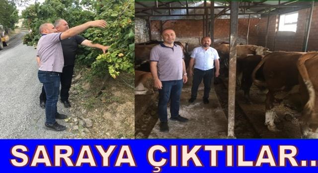 Başkan Tandoğan ile Bülent Şişman Saray'a çıktılar.