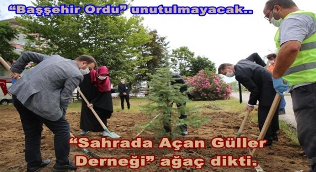 Hacıemiroğulları beyliği anısı yaşatılıyor..