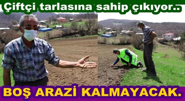 Ordu'da atıl araziler tarımla buluşuyor..
