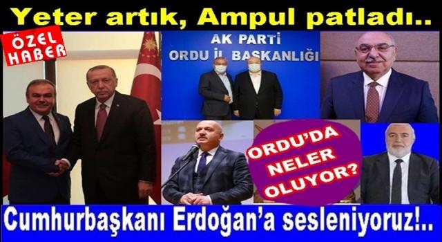 Başkan Halit Tomakin ve ekibi AKP'yi Ordu'da bitirdi..
