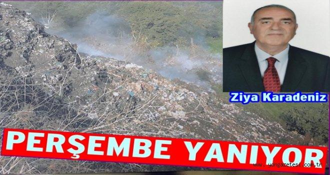 Domuz Tepesi çöp yangını 40 gündür devam ediyor..