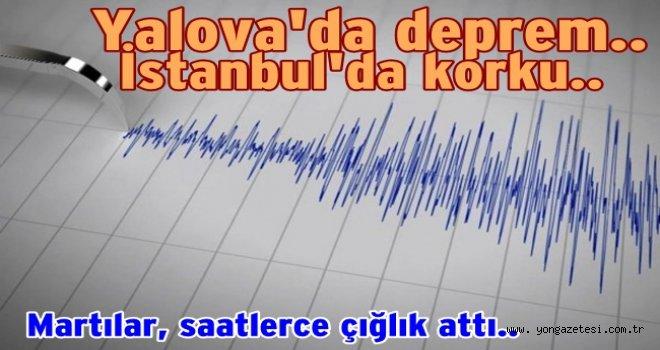 İstanbul'da deprem paniğe neden oldu..