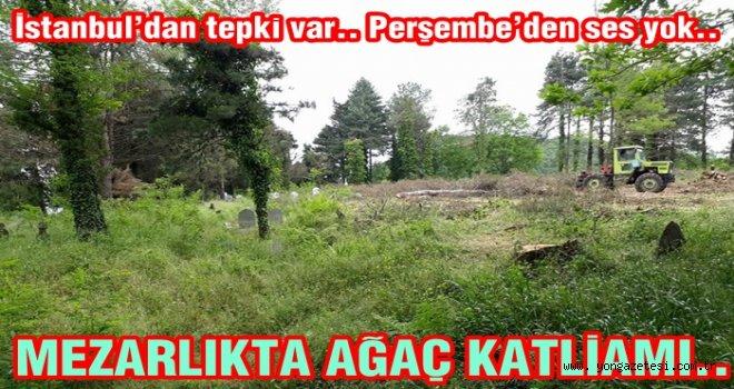 Mezarlıktaki ağaçların kesilmesine tepki..