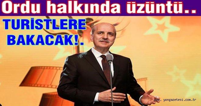 Numan Kurtulmuş, Turizm bakanı oldu..