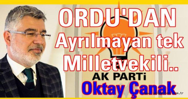 Oktay Çanak, Ankara'yı değil, Ordu'yu tercih ediyor..
