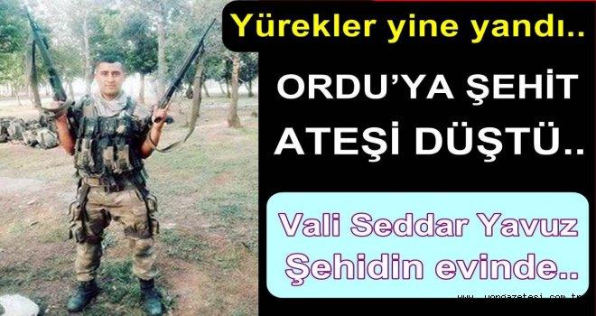 Ordu'lu uzman çavuş Hakkari'de şehit oldu..