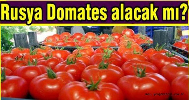 Rusya'dan Türkiye'yi üzen domates açıklaması..