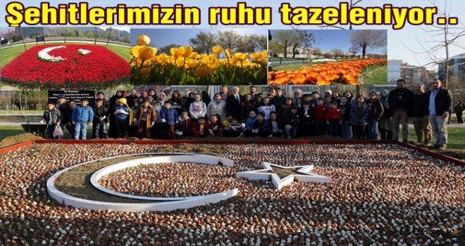 ŞEHİTLER ANISINA DİKİLEN LALELER FİLİZLENDİ..