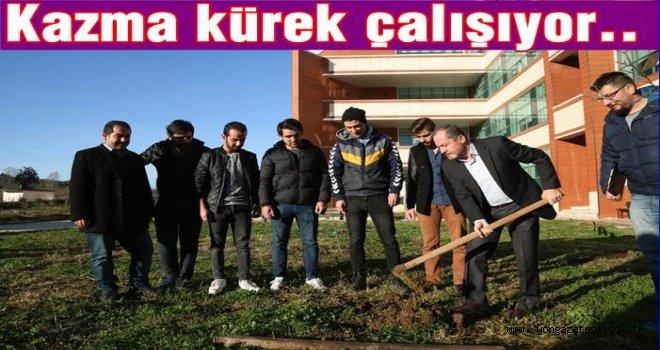 Üniversite rektörü Yarılgaç, fidan dikti..