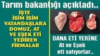 Bakanlık Domuz, At, ve Eşek eti satan firmaları açıkladı..