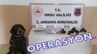 AKKUŞ İLÇESİNDE UYUŞTURUCU OPERASYONU..