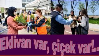 Altınordu Belediyesi vatandaşlara Eldiven ve çiçek dağıtıyor..