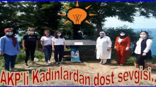 AK Partili kadınlar sokak dostlarına sahip çıktılar..