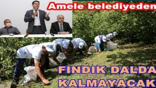 FINDIĞI BELEDİYE İŞÇLERİ TOPLAYACAK..