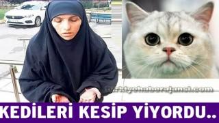 Sokak Kedilerini keserek yiyen kadın yakalandı..