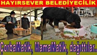 Altınordu Belediyesinden İnsanlara çorba, hayvanlara yem..