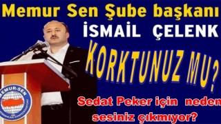 İsmail Çelenk Sedat Peker'e neden sessiz kalıyorsun?