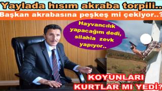 ÇAMBAŞINDA HAZİNE ARAZİSİ BÖYLE İŞGAL EDİLİYOR..
